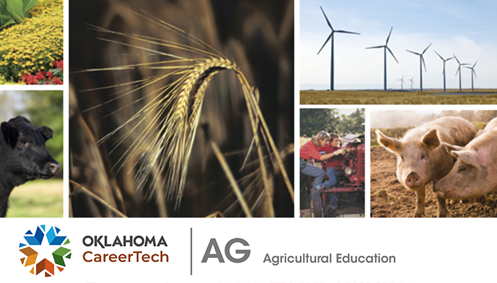 Agricultural Education Website Banner consists of 5 images: yellow wildflowers, Black Angus cow standing in a pasture, wheat waving in the wind, a row of wind turbines on open land, mother and son working on a farm tractor, and 2 pigs on a farm